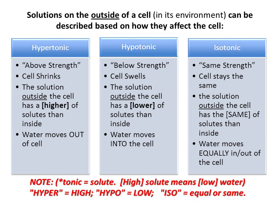 NOTE: (*tonic = solute. [High] solute means [low] water)